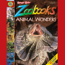 Zoobooks Magazine Coupons and Deals